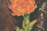 un-fiore-per-ivan2010