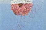 un-fiore-per-ivan2011-b