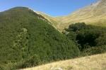 17-pendici-del-monte-corvo-in-prossimita-della-fonte-di-campiglione