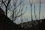 cascate-di-san-giovanni-panorama