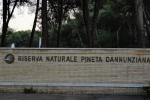 pineta-dannunzana-ingresso