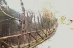piana-delle-mele-sentiero