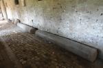 abbazia-di-san-giovanni-in-venere-colonne-tempio-di-venere